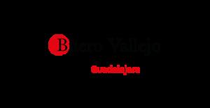 buero vallejo-logo