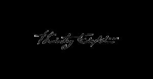Thirty eight-logo