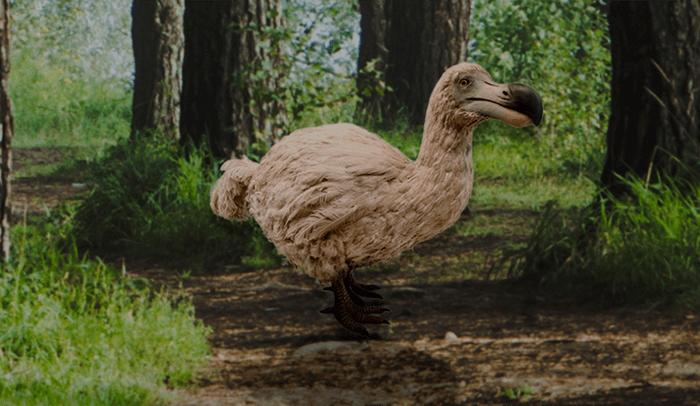 La realidad aumentada para resucitar animales extintos